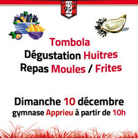Dégustation Huîtres - Moules Frites